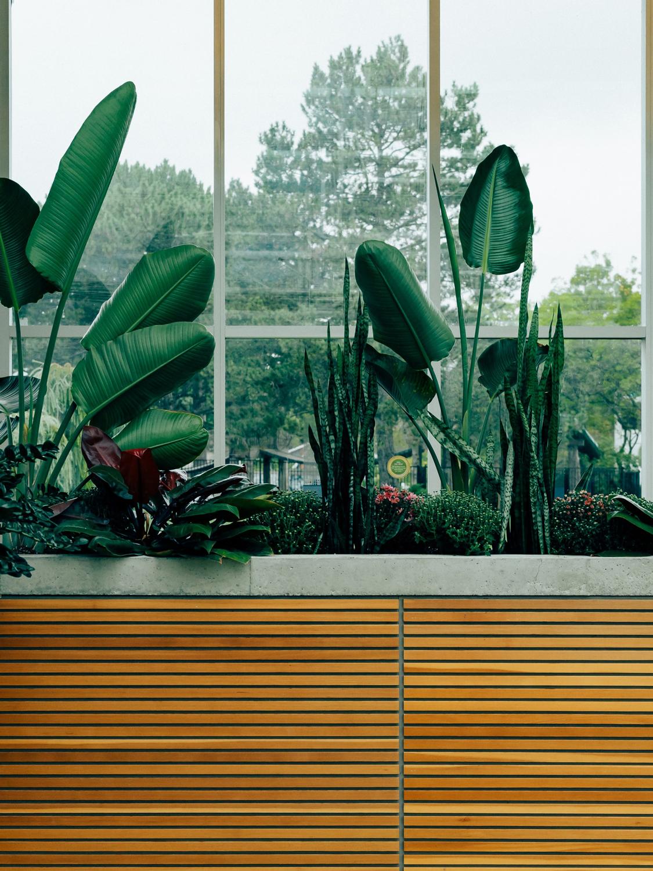 Grün im Büro